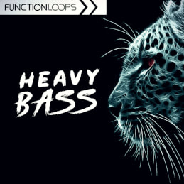Heavy Bass - Dubstep, Midtempo, Riddim Samples, Loops, Stems