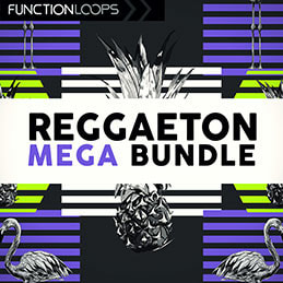 Reggaeton Bundle 2019 - 600 Audio Files, 15 Construction Kits, Vocal